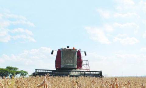 Produtividade e preço animam produtores de soja