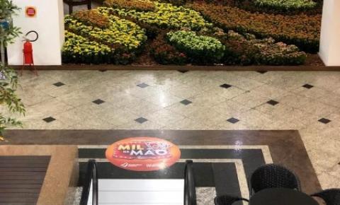 Sete mil vasos de flores compõem Tapete Natural de Primavera no Atlântico Shopping