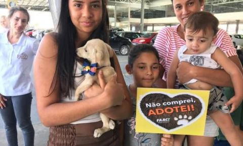 Sábado (12/01) tem feira de adoção da FAACI