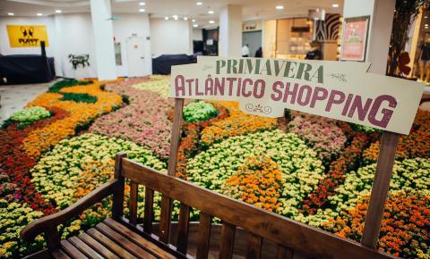 Atlântico Shopping fará distribuição gratuita de sete mil vasos de flores no próximo sábado