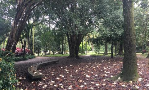 Colégio Pio XII comemora 65 anos com plantio de mudas e Poste da Paz no Parque Burle Marx