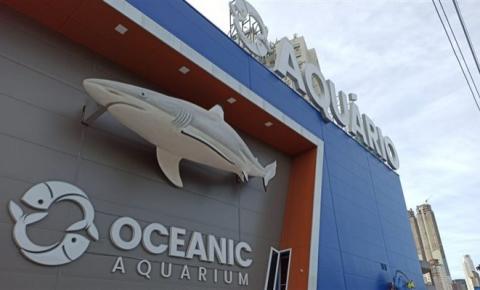 Oceanic Aquarium conquista dois importantes selos pelas medidas adotadas na prevenção ao Covid-19